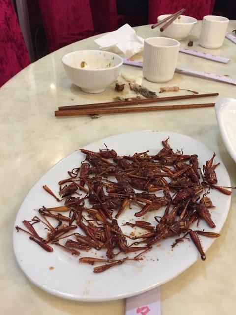 云南吃的第一盘虫子