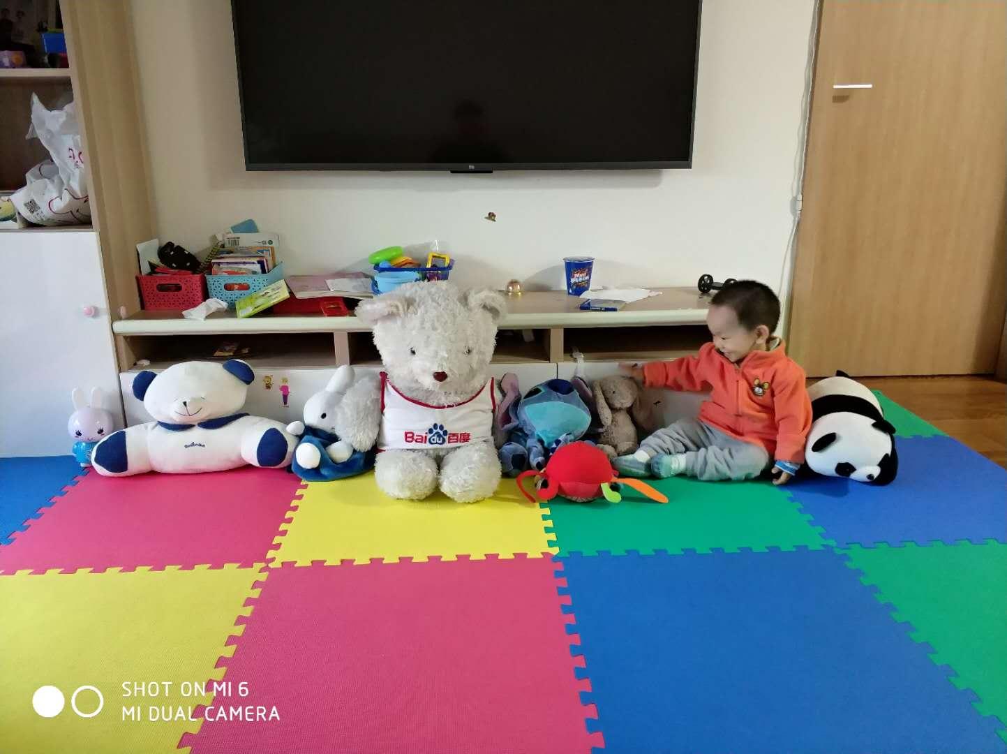 莫莫和玩具们排排坐